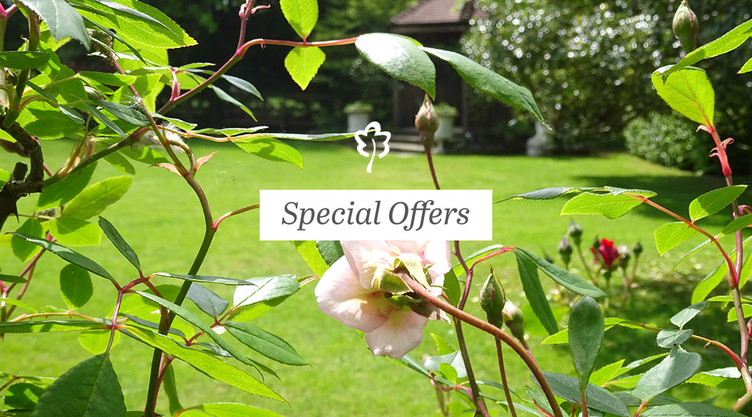 Special offers image